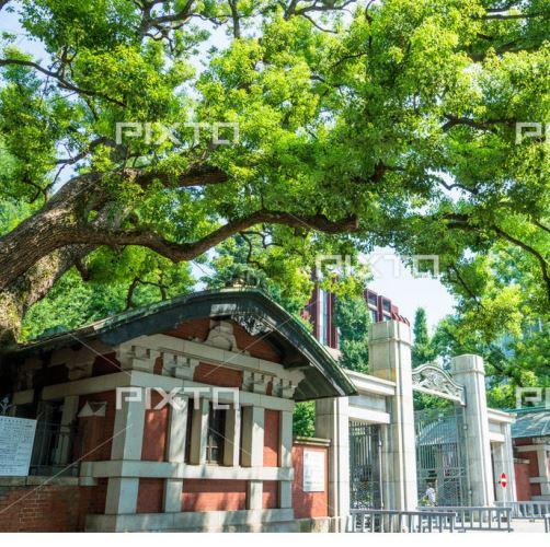 住宅型有料老人ホーム あるくの森